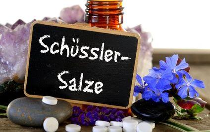 schüssler salze für stoffwechselanregung